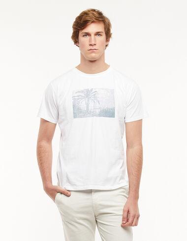 White palms t-shirt - Charity T-Shirts - Nícoli